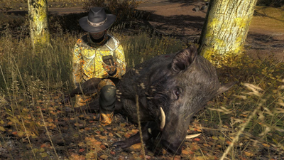 Trophy wildboar