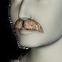 Moustache 05