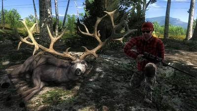 Trophy nt mule deer