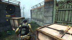 Survivor gameplay