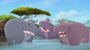 Hippos in TLG