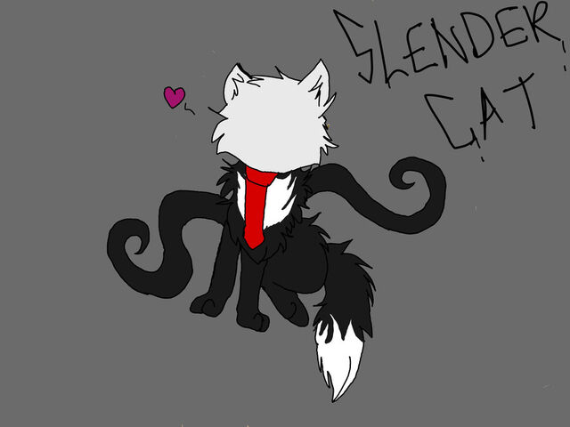 File:Slender cat by kikipoptarts-d5ctlh4.jpg