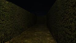 Hedge slendermanshadows