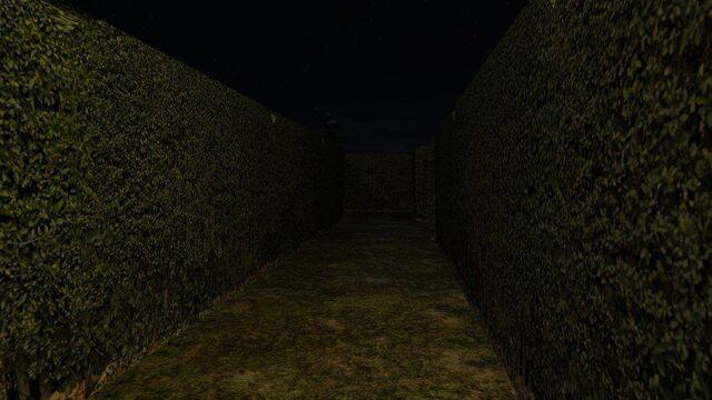 File:Hedge slendermanshadows.jpg