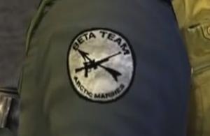 Beta Team, Arctic Marines insignia - The Thing (2002)