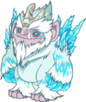 Elder Ice Adult