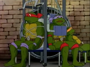 Donnie and Raph's Masks