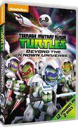 New tmnt dvd coming soon by ninjaturtlefangirl-d9ufije