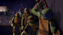 The Ninja Turtles