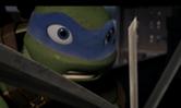 Leo-swords
