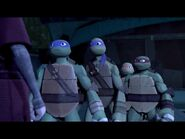 Scared Turtles