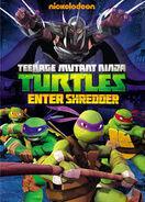 Teenage Mutant Ninja Turtles Enter Shredder