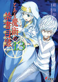 Toaru Majutsu no Index Light Novel v13 cover