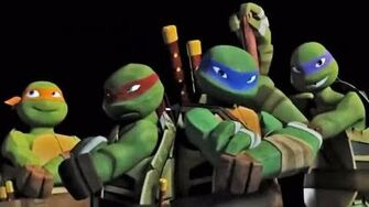 Teenage Mutant Ninja Turtles Original Theme Song (TMNT)