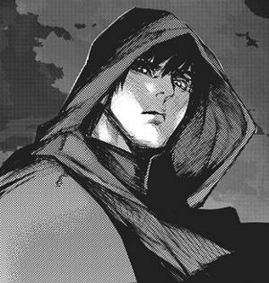 Amon in re