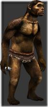 Homo erectus pekinensis thumb