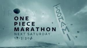 One Piece Marathon (12-26-15)