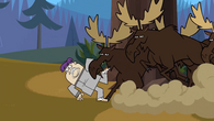 Max moose
