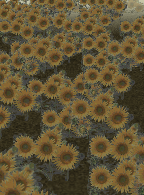 File:Garden of the Sun.png