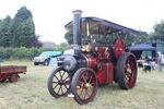 Aveling & Porter no. 9179 TE Whippet reg CJ 4158 at Woodcote 09 - IMG 8158