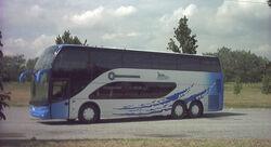 Mauri (Ayats) bus