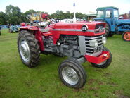 MF 165 tractor DTJ 431E at Driffield-P8100534