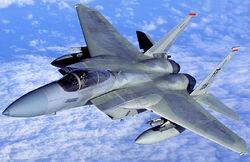 F15guy