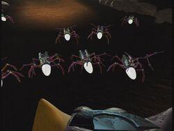 Arachnoids