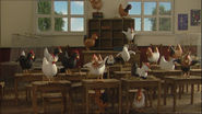 ChickensToSchool68