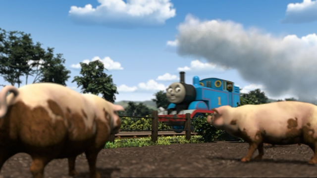 File:ThomasAndThePigs9.png