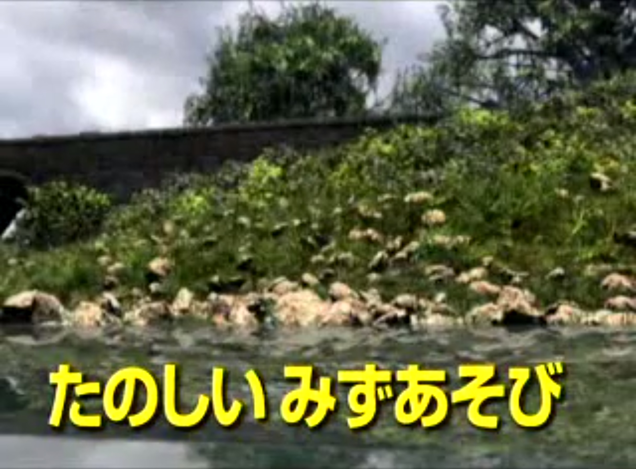 File:Splish,Splash,Splosh!JapaneseTitleCard.jpeg