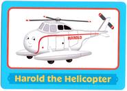 HaroldTradingCard