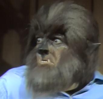 Episode 753: Dog Days   Dark Shadows Every Day  Dark Shadows Movie Werewolf