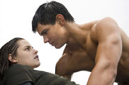 Bella-swan-jacob-black-beach-480x320