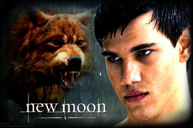File:New-moon-wolf-jacob.jpg