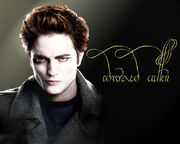 750px-Edward Cullen Wallpaper by bondofflamex3