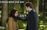 Funny-twilight-picture