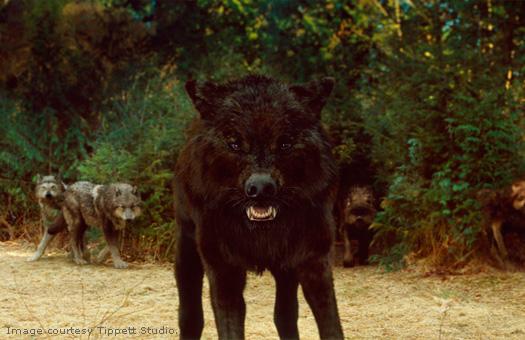 File:Wolves3.jpg