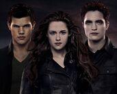 Twilight300