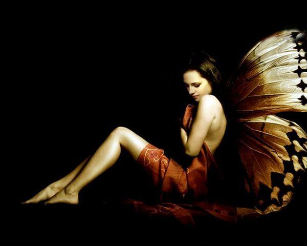 File:-Bella-the-butterfly-bella-swan-14377290-1280-1024.jpg