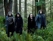Eclipse Volturi line -up; Felix, Jane, Alec, Demetri
