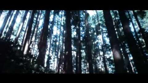 The Twilight Saga - New Moon Victoria&Wolves Scene