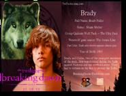 580px-BradyCard