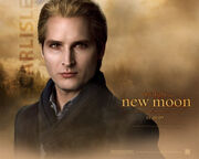 New-moon-wallpaper-carlisel