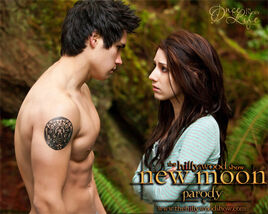 The Hillywood show newmoon
