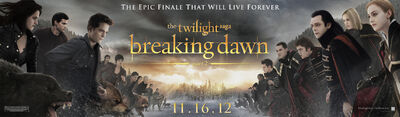 BD2banner-exclusive-lg
