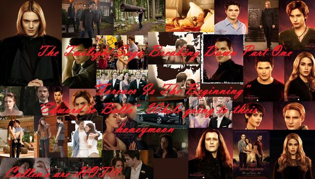 File:Breaking Dawn Part One'.jpg
