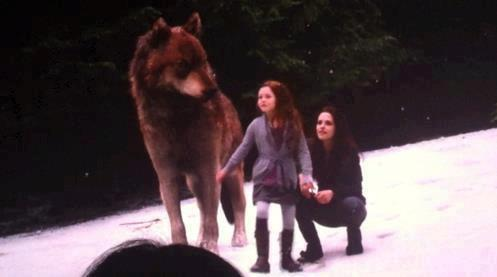 File:Renesmee, Jacob and Isabella.jpg