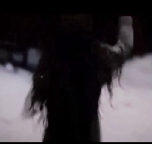 File:Child renesmee12.PNG