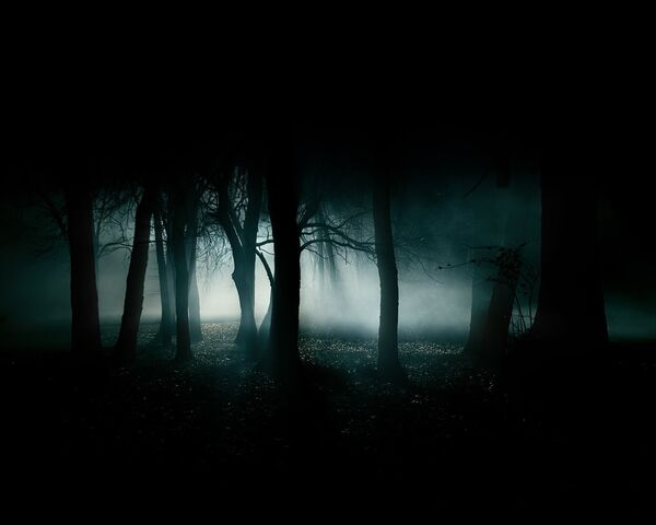 File:Dark forest.jpg